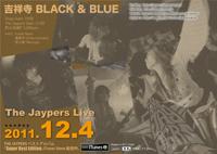 kichijyoji_black_blue_live